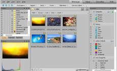 ACDSee Pro v5.2 英文和谐版
